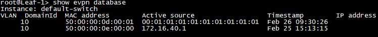 EVPN Database